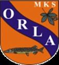 Orla Wąsosz