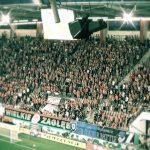Frekwencja w Lubinie nie powala. Jak przyciągnąć kibiców na mecze Zagłębia?