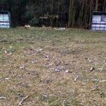 Boisko klubu B klasy zniszczone przez nieznanych… drwali