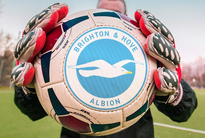 Marcel Rosenau Brighton & Hove Albion