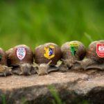 Wyścig ślimaków do II ligi. Kto ma największe szanse na awans?