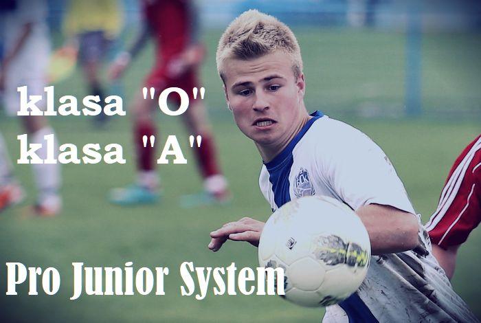 Dolnośląski Pro Junior System