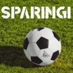 Wyniki sparingów dolnośląskich drużyn [15 - 16 LUTEGO]